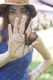 Spindeln och flickan gömma i handflatan arkivfoton
