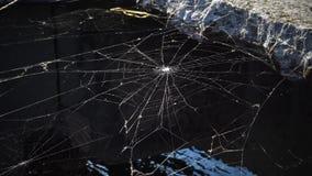 Spindelrengöringsduk av tvärstycket ovanför vattnet arkivfilmer