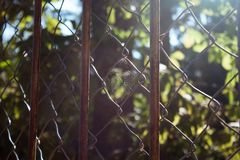Spindelrengöringsduk på ett staket arkivfoton