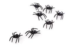 spindlar Fotografering för Bildbyråer