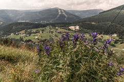 Spindleruv mlyn i Krkonose berg (Tjeckien) royaltyfri bild