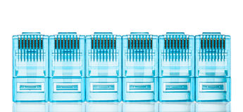 Spine blu di lan di Ethernet rj45 Immagine Stock