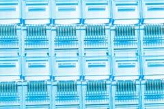 Spine blu di lan di Ethernet rj45 Fotografia Stock Libera da Diritti