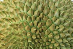 Spine della frutta del durian Fotografie Stock Libere da Diritti