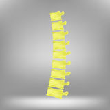 Spine Icon Royalty Free Stock Photography