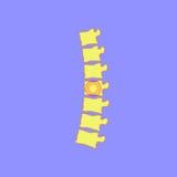 Spine Icon Royalty Free Stock Photos