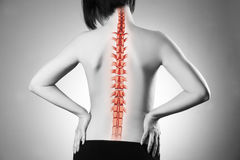 Spine pain, woman with backache and ache in the neck, black and white photo with red backbone. On gray background Stock Images