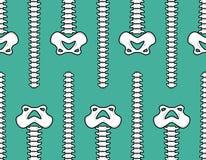 Spine and pelvis seamless pattern. Bone ornament. Medical anatom. Y background Stock Photo