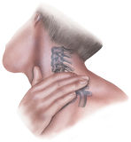 Spine - Pressure to Clavicle and Cervical Vertebrae Lateral View. Applying pressure to clavicle, scapula and cervical neck bones to relieve pain royalty free stock photos