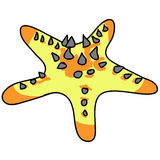 Spine seastar cartoon. Spine sea star cartoon on white background Stock Photo