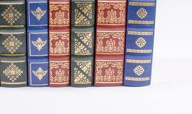 Spines of the books. Stock Image