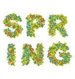 Sping blommatext Arkivbild