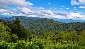 Sping In The Great Smoky Mountains royalty free stock photo