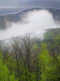 Sping landscape. Sping mountain landscape in krimea,Ukraine stock photo