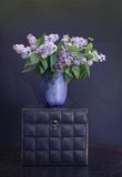Sping Lilac Still Life Royalty Free Stock Images