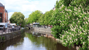 Sping in Uppsala Royalty Free Stock Image