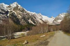 Sping w Kaukaz Zdjęcia Stock