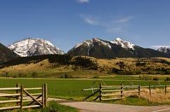 Spingtime nel Montana Immagine Stock