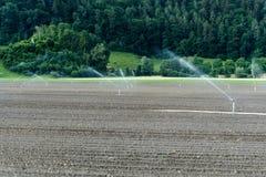 Spinkler和灌溉系统在一个新近地被种植的农业领域 免版税库存照片