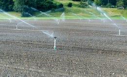 Spinkler和灌溉系统在一个新近地被种植的农业领域 库存照片