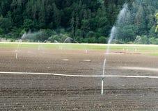 Spinkler ed impianto di irrigazione su un campo agricolo di recente coltivare Fotografie Stock