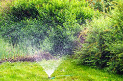 Spinkler in garden, watering the lawn. Spinkler in garden, sunset. Watering the lawn Stock Images