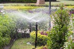 Spinkler i trädgården som bevattnar gräsmattan Arkivbilder