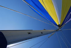 Spinnaker sail. Full spinnaker sailing on a super sunny day Stock Images