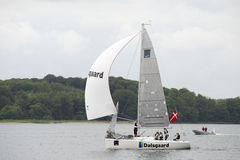 Spinnaker Sailing Royalty Free Stock Photography