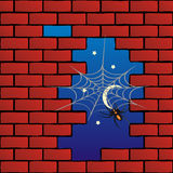 Spinne auf Backsteinmauer Lizenzfreie Stockfotos