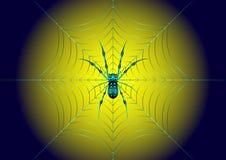 Spinne auf dem Netz lizenzfreie abbildung