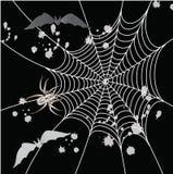 Spinne auf einem schwarzen Hintergrund Lizenzfreie Stockfotografie