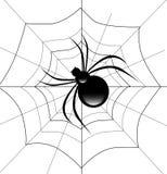 Spinne auf seinem Web lizenzfreie abbildung