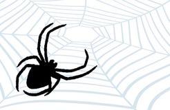 Spinne der Jäger. Lizenzfreie Stockfotos