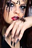 Spinne-Mädchen und Brachypelma smithi Lizenzfreie Stockbilder