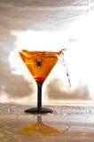 Spinne Martini Lizenzfreies Stockbild