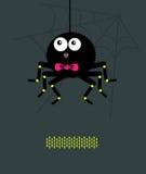 Spinne mit einem Bogen A lizenzfreie abbildung