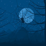 Spinne nachts Lizenzfreie Stockfotografie