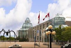 Spinne in Ottawa Kanada Lizenzfreie Stockfotografie
