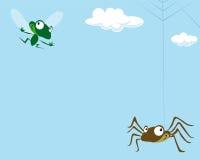 Spinne und die Fliege Stockbilder
