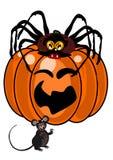 Spinne und Maus mit Kürbis vektor abbildung