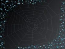 Spinnen en spinneweb Stock Foto's