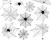 Spinnen-Netz-Sammlung Stockfotos