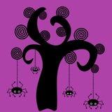 Spinnen und Baum Lizenzfreie Stockfotos