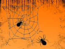 Spinnen-Web Lizenzfreie Stockbilder