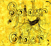 Spinnen-Zider-Abbildung Lizenzfreie Stockfotografie