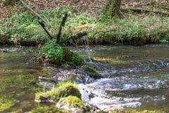 Spinnend bemost waterwiel royalty-vrije stock foto's
