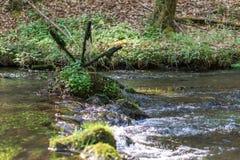 Spinnend bemost waterwiel royalty-vrije stock fotografie