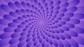 Spinnender heller symmetrischer Trichter von violetten Blumenblättern stock abbildung