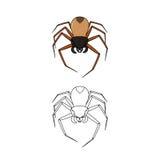 Spinnenfarbe und -entwurf Stockbilder